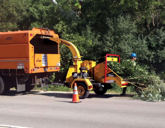 Commercial Tree Services-Palmetto Bay FL Tree Trimming and Stump Grinding Services-We Offer Tree Trimming Services, Tree Removal, Tree Pruning, Tree Cutting, Residential and Commercial Tree Trimming Services, Storm Damage, Emergency Tree Removal, Land Clearing, Tree Companies, Tree Care Service, Stump Grinding, and we're the Best Tree Trimming Company Near You Guaranteed!