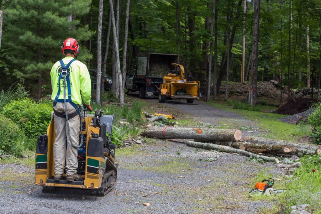 Emergency Tree Removal-Palmetto Bay FL Tree Trimming and Stump Grinding Services-We Offer Tree Trimming Services, Tree Removal, Tree Pruning, Tree Cutting, Residential and Commercial Tree Trimming Services, Storm Damage, Emergency Tree Removal, Land Clearing, Tree Companies, Tree Care Service, Stump Grinding, and we're the Best Tree Trimming Company Near You Guaranteed!