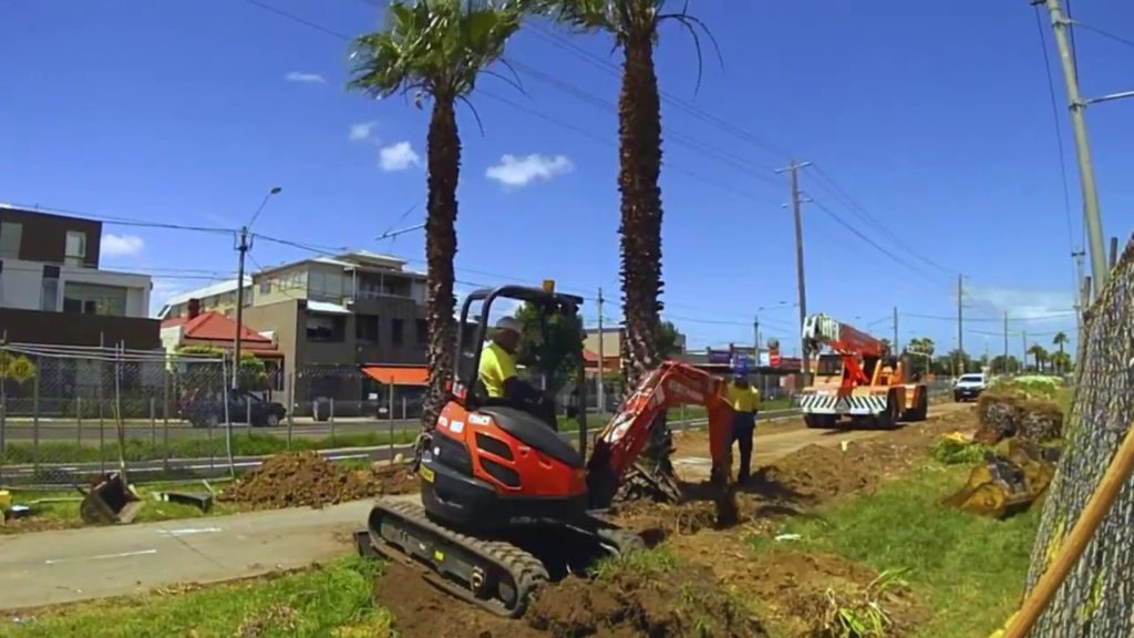 Palm Tree Removal-Palmetto Bay FL Tree Trimming and Stump Grinding Services-We Offer Tree Trimming Services, Tree Removal, Tree Pruning, Tree Cutting, Residential and Commercial Tree Trimming Services, Storm Damage, Emergency Tree Removal, Land Clearing, Tree Companies, Tree Care Service, Stump Grinding, and we're the Best Tree Trimming Company Near You Guaranteed!