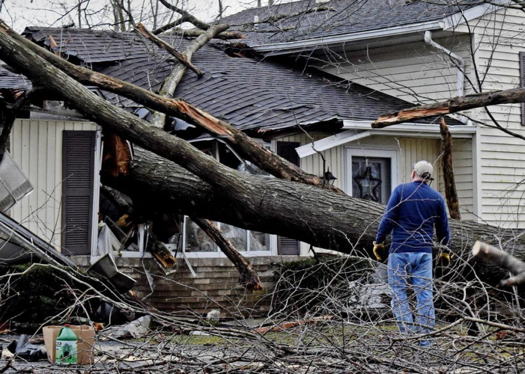 Storm Damage-Palmetto Bay FL Tree Trimming and Stump Grinding Services-We Offer Tree Trimming Services, Tree Removal, Tree Pruning, Tree Cutting, Residential and Commercial Tree Trimming Services, Storm Damage, Emergency Tree Removal, Land Clearing, Tree Companies, Tree Care Service, Stump Grinding, and we're the Best Tree Trimming Company Near You Guaranteed!